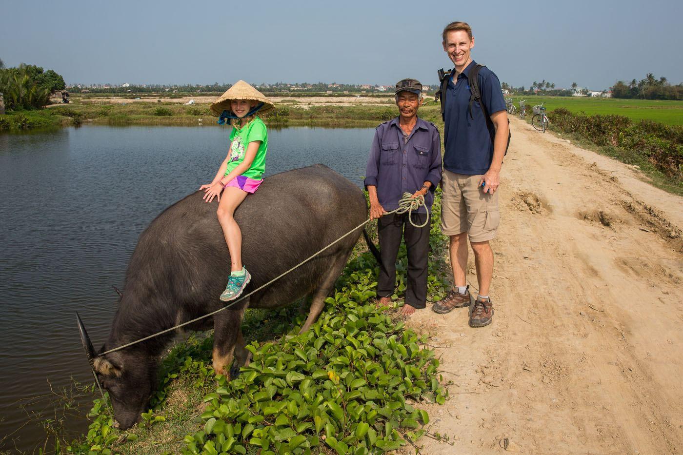 Buffalo and Vietnamese Man