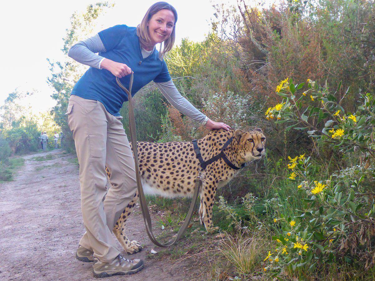 Julie Rivenbark Walking a Cheetah