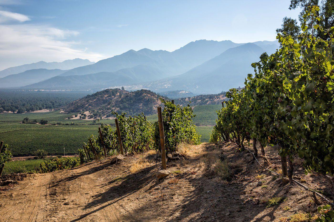 El Principal Winery
