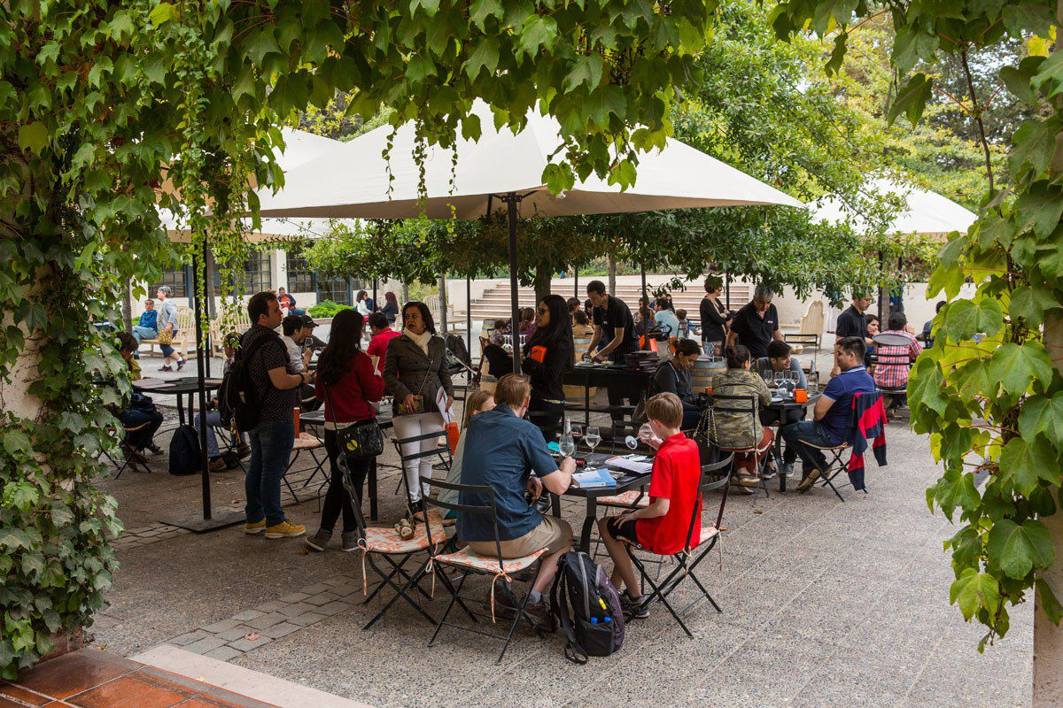 Lunch at Concha Y Toro