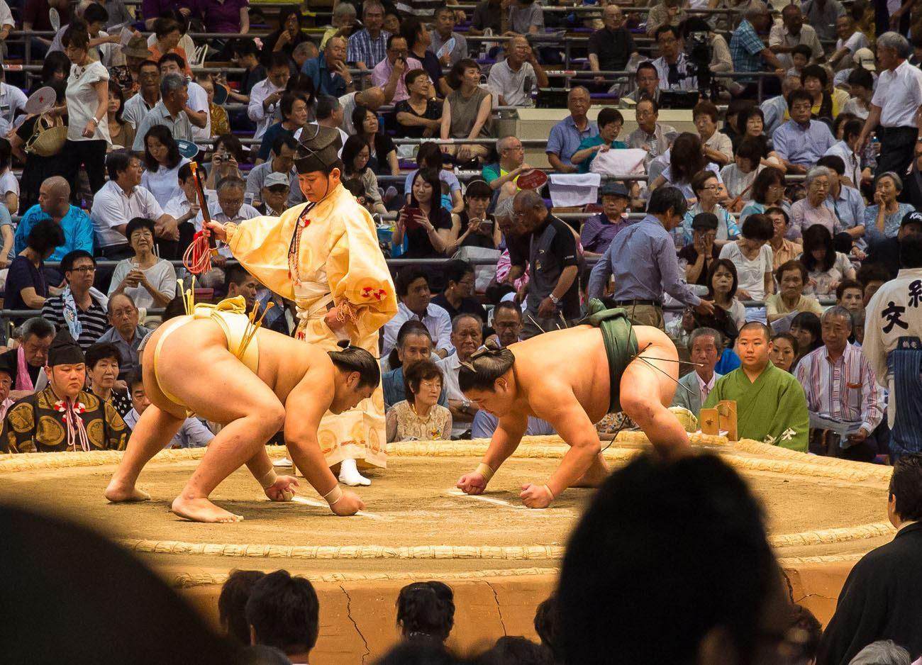 Sumo Wrestling Progression 1