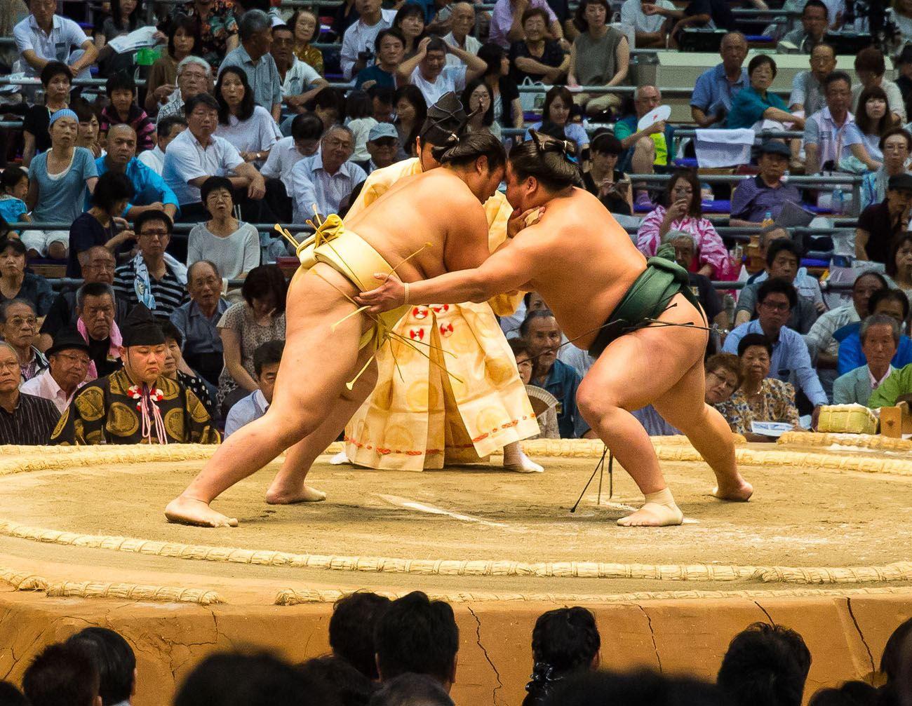 Sumo Wrestling Progression 3