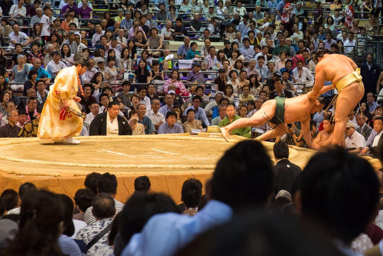 Sumo Wrestling Progression 4