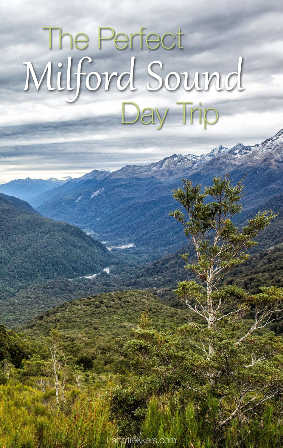 The Perfect Milford Sound Day Trip