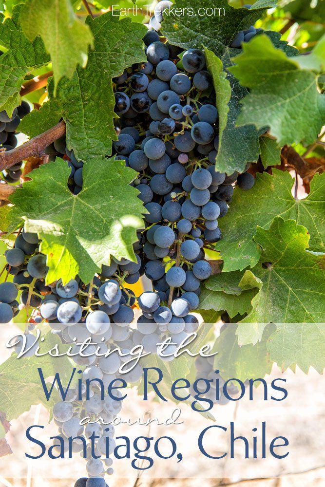 Visiting the Wine Regions Santiago Chile