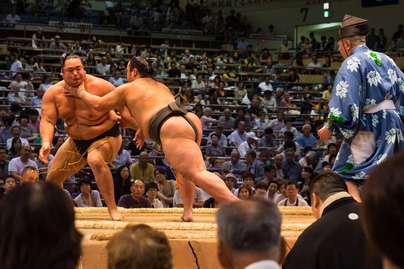 Watching Sumo Wrestling