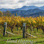 Island Hopping New Zealand
