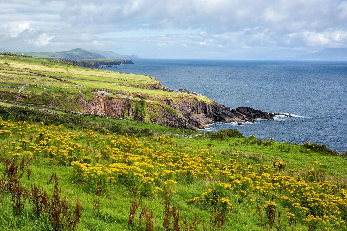 Ireland in August