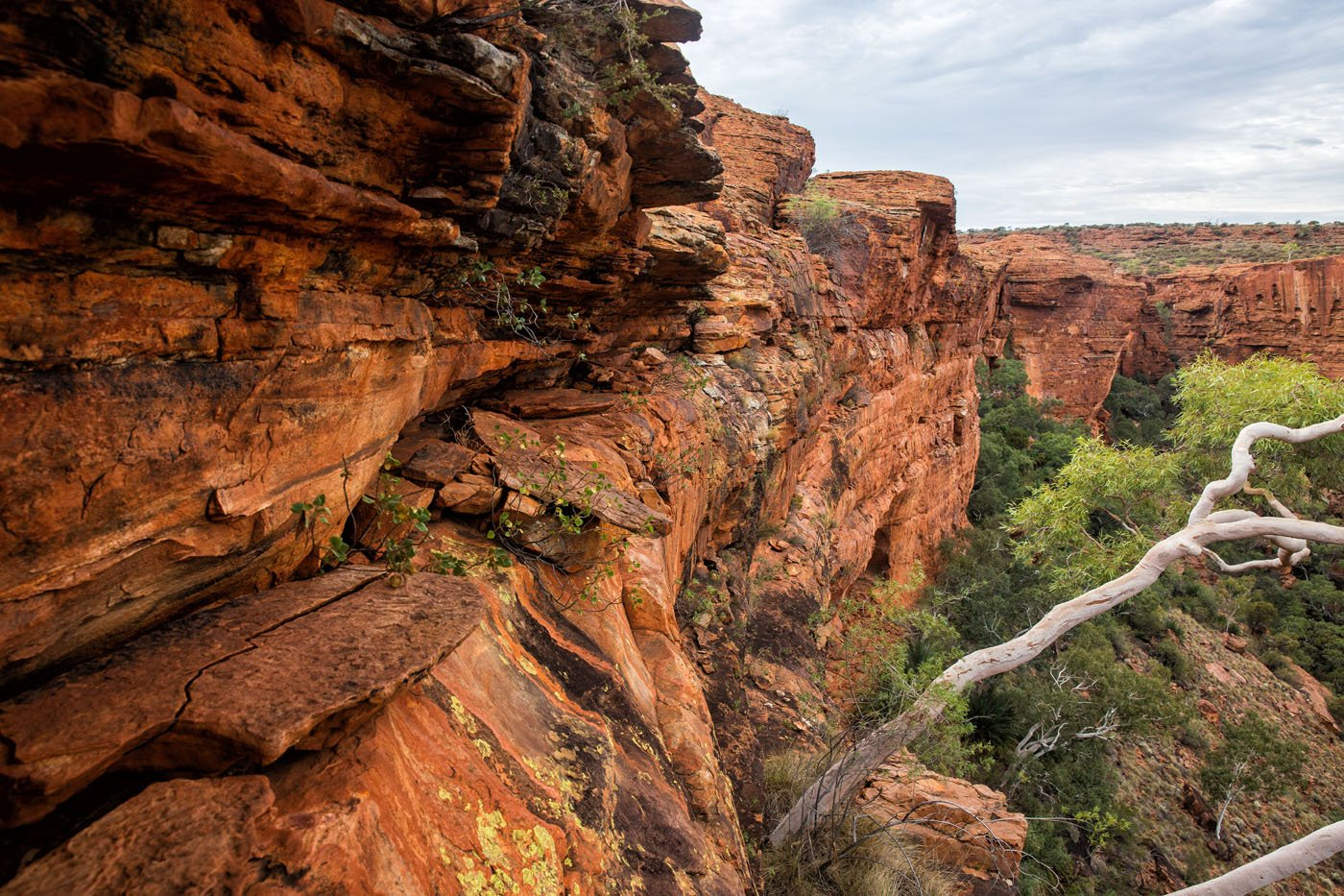 Australia hiking