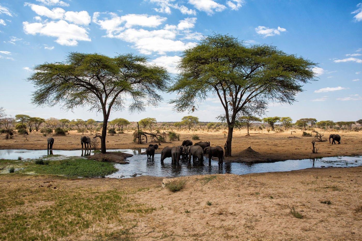 Senyati Camp Botswana