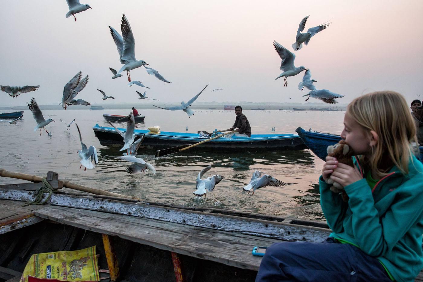 Varanasi birds