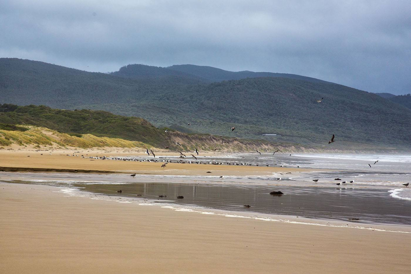 Cloudy Bay Bruny Island