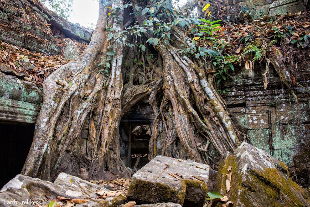 Best of Siem Reap