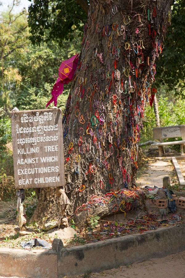Killing Tree Killing Fields