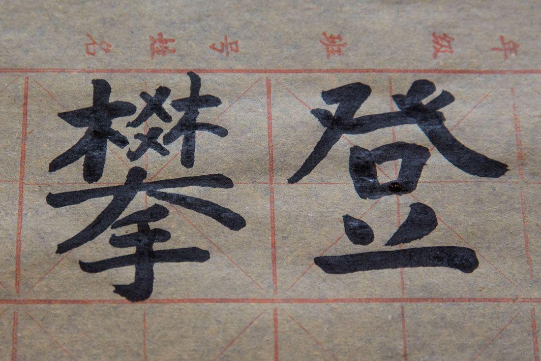 Earth Trekkers in Mandarin