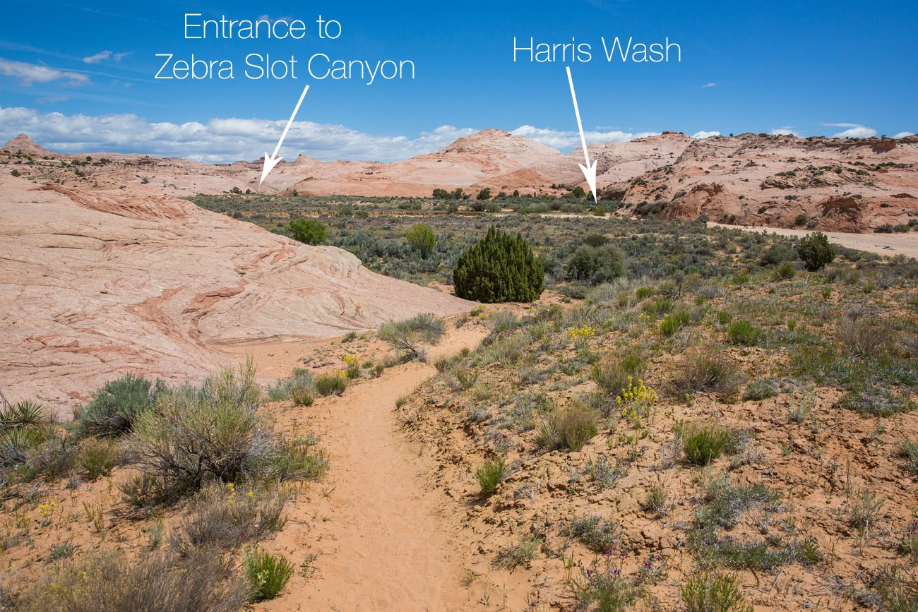 Harris Wash labelled