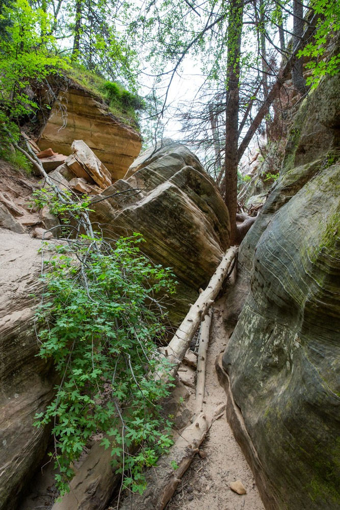 Hidden Canyon Obstacle