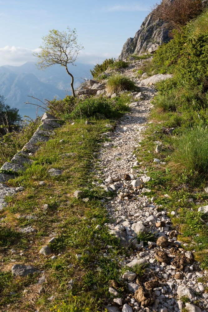 Ladder of Kotor Trail