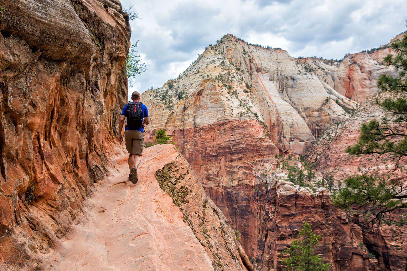 Best Zion Hikes