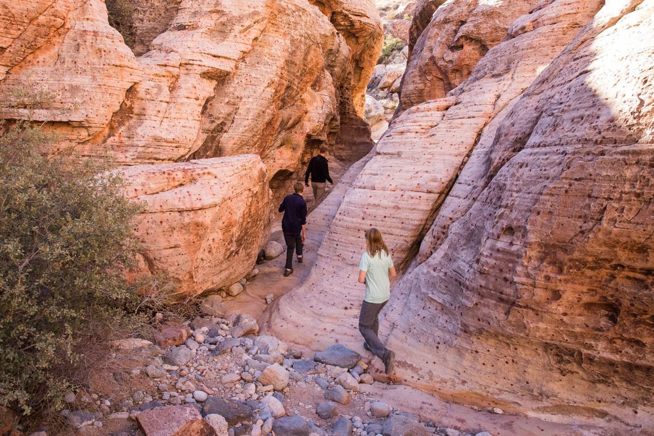 Hiking Calico Hills