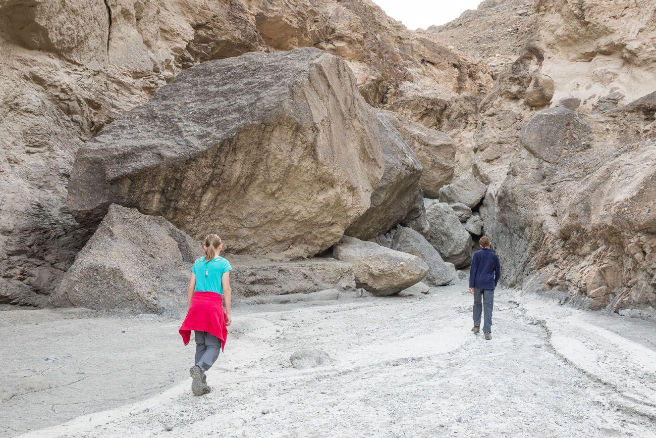 Mosaic Canyon Rock Obstacle