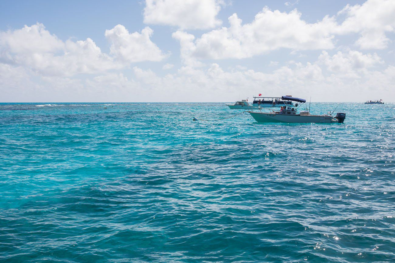 John Pennekamp Snorkeling Florida Keys
