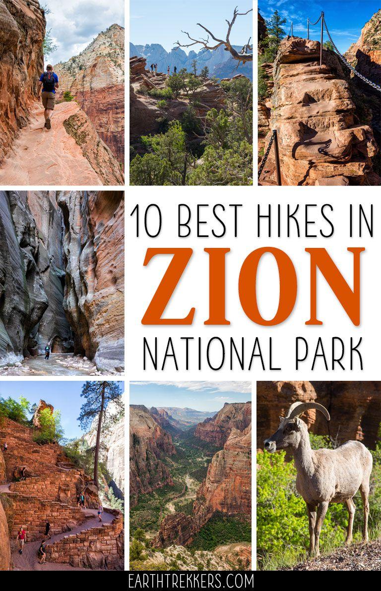 Best Hikes Zion National Park