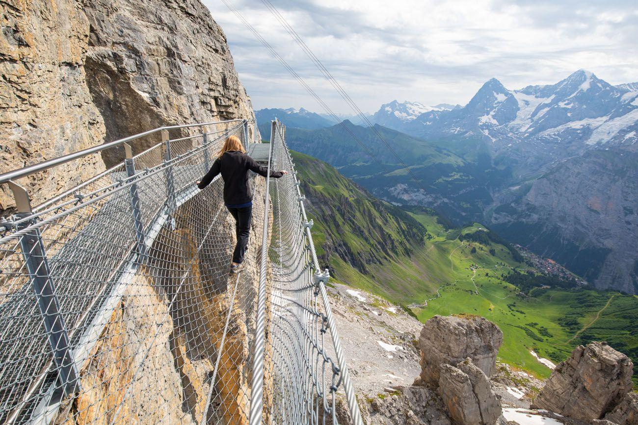Jungfraujoch or Schilthorn Image
