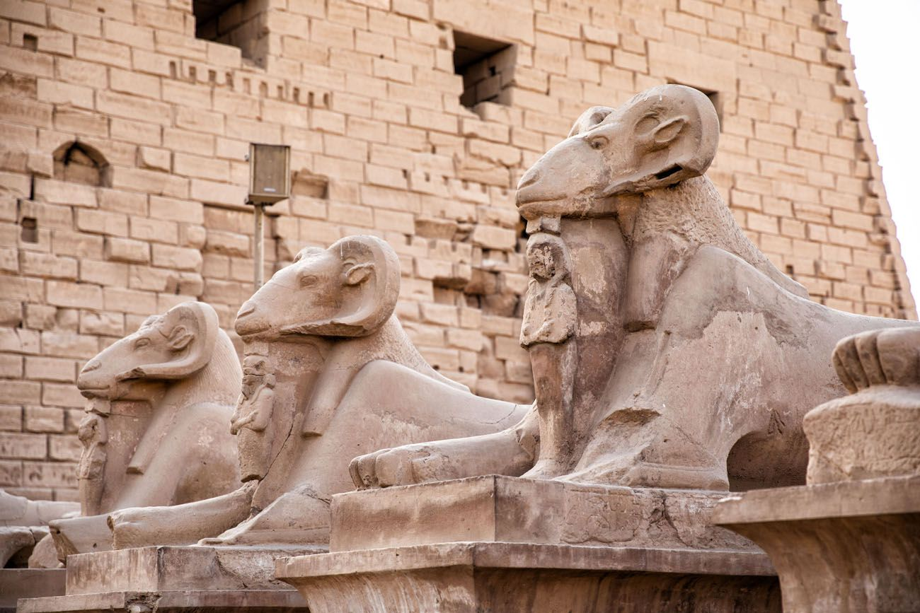 Ram Headed Sphinx East Bank of Luxor