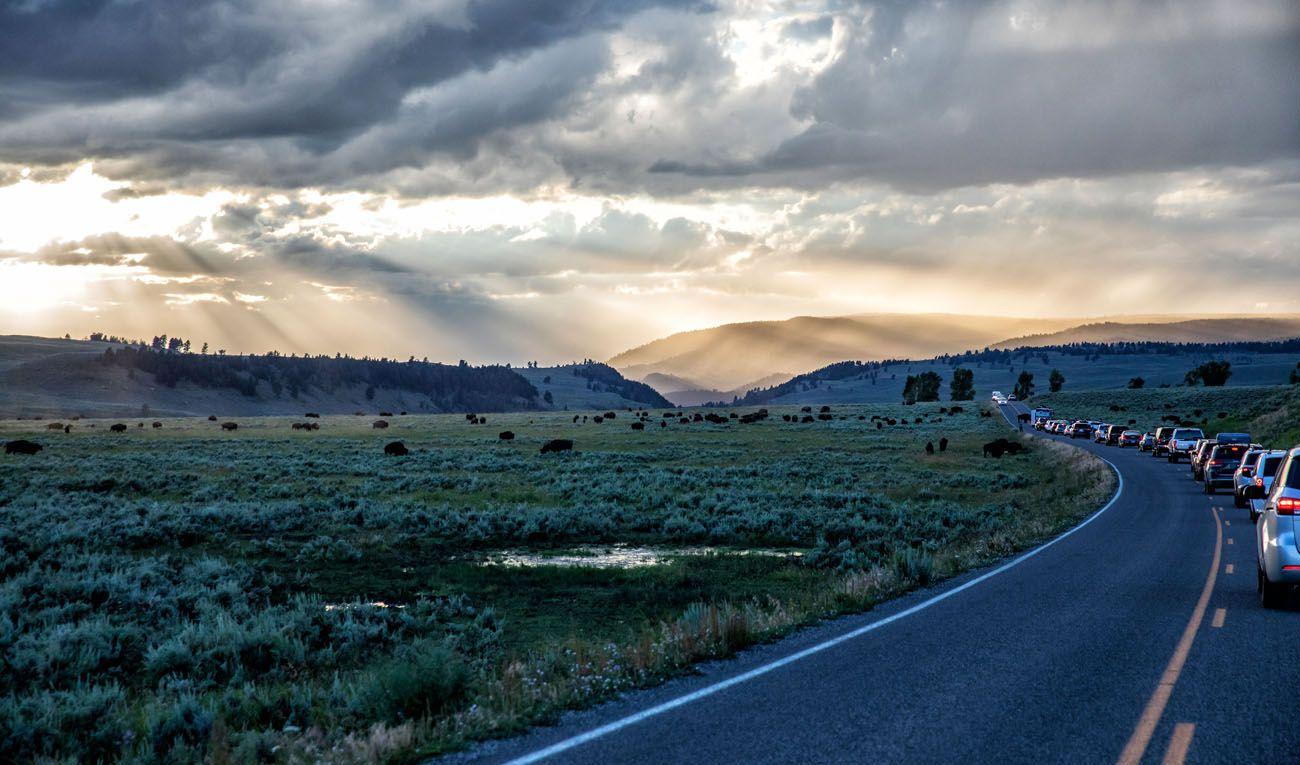 Lamar Valley Sunset