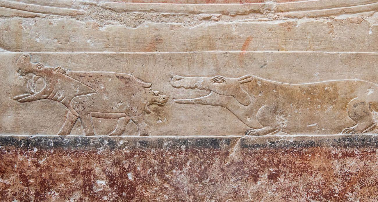 Tomb Carving Saqqara Dahshur Memphis and Saqqara