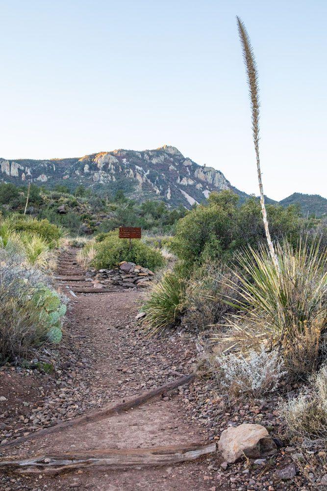 Hiking Trail Big Bend South Rim Trail
