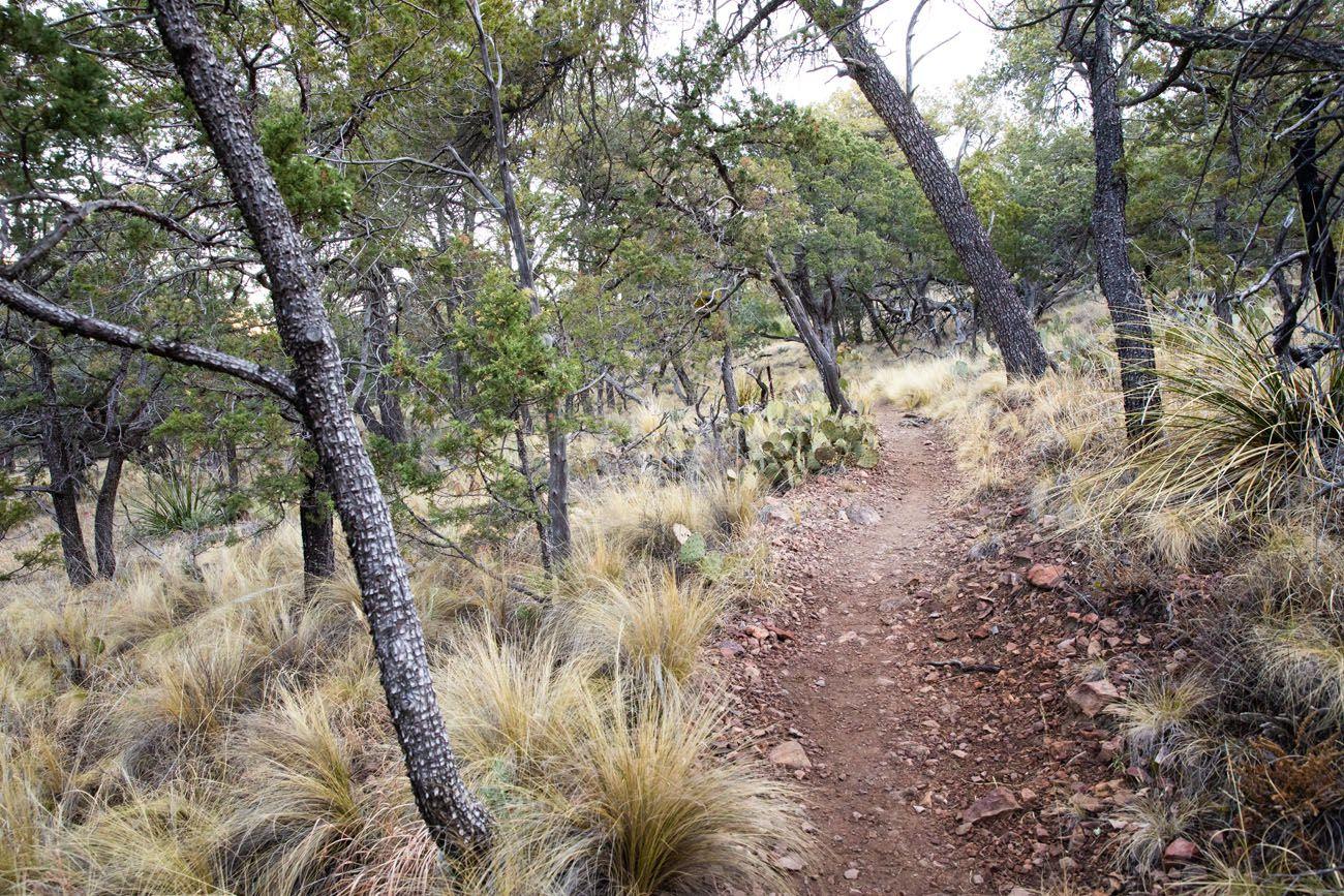 Hiking Trail South Rim Trail