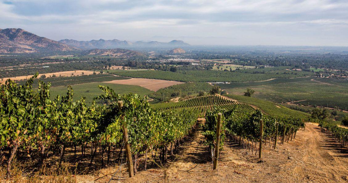 Santiago Wine Region