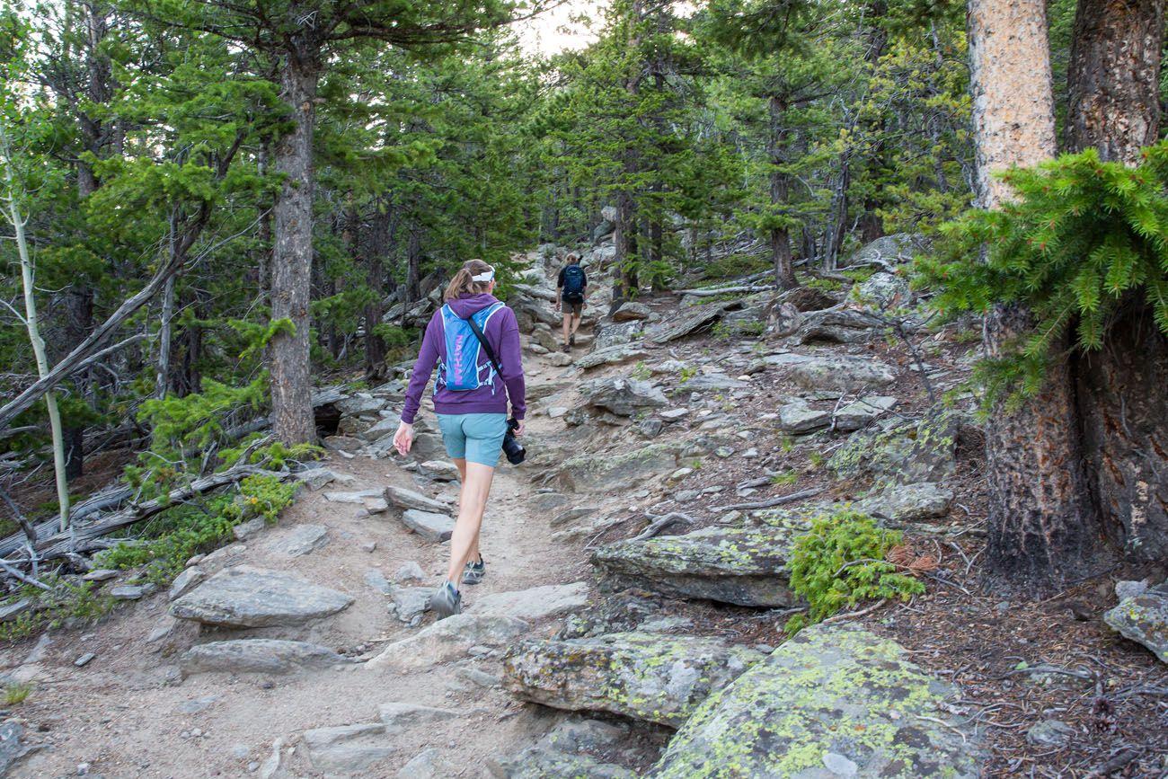 Deer Mountain Trail