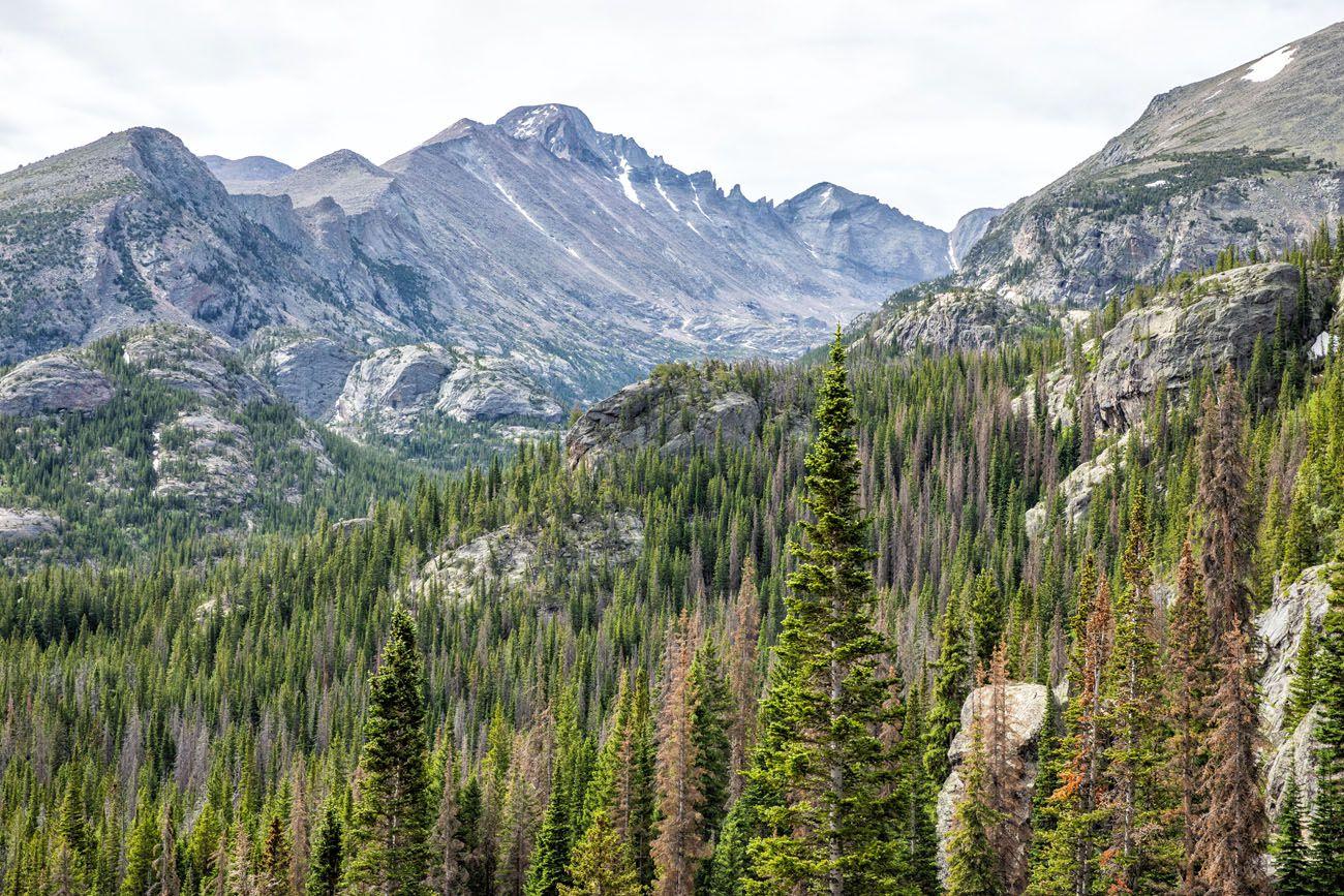 View of Longs Peak