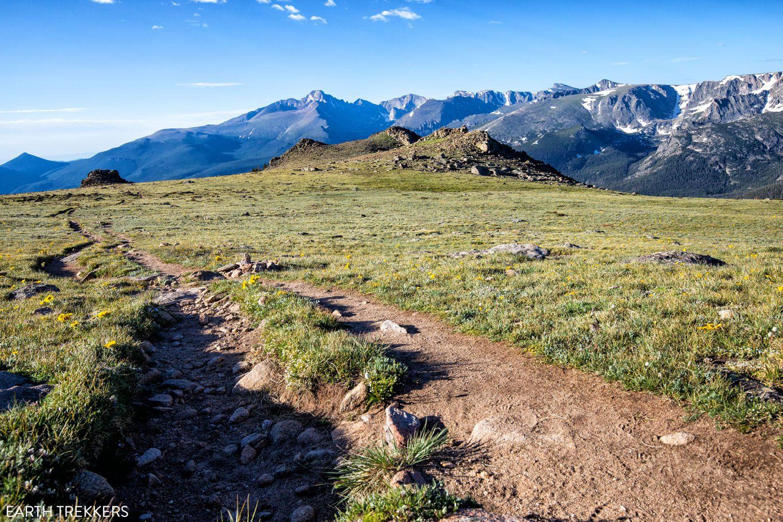 Alpine Tundra RMNP