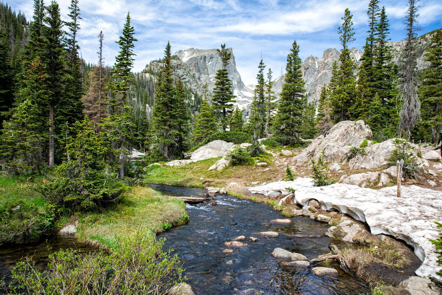 RMNP in July things to do in Rocky Mountain National Park