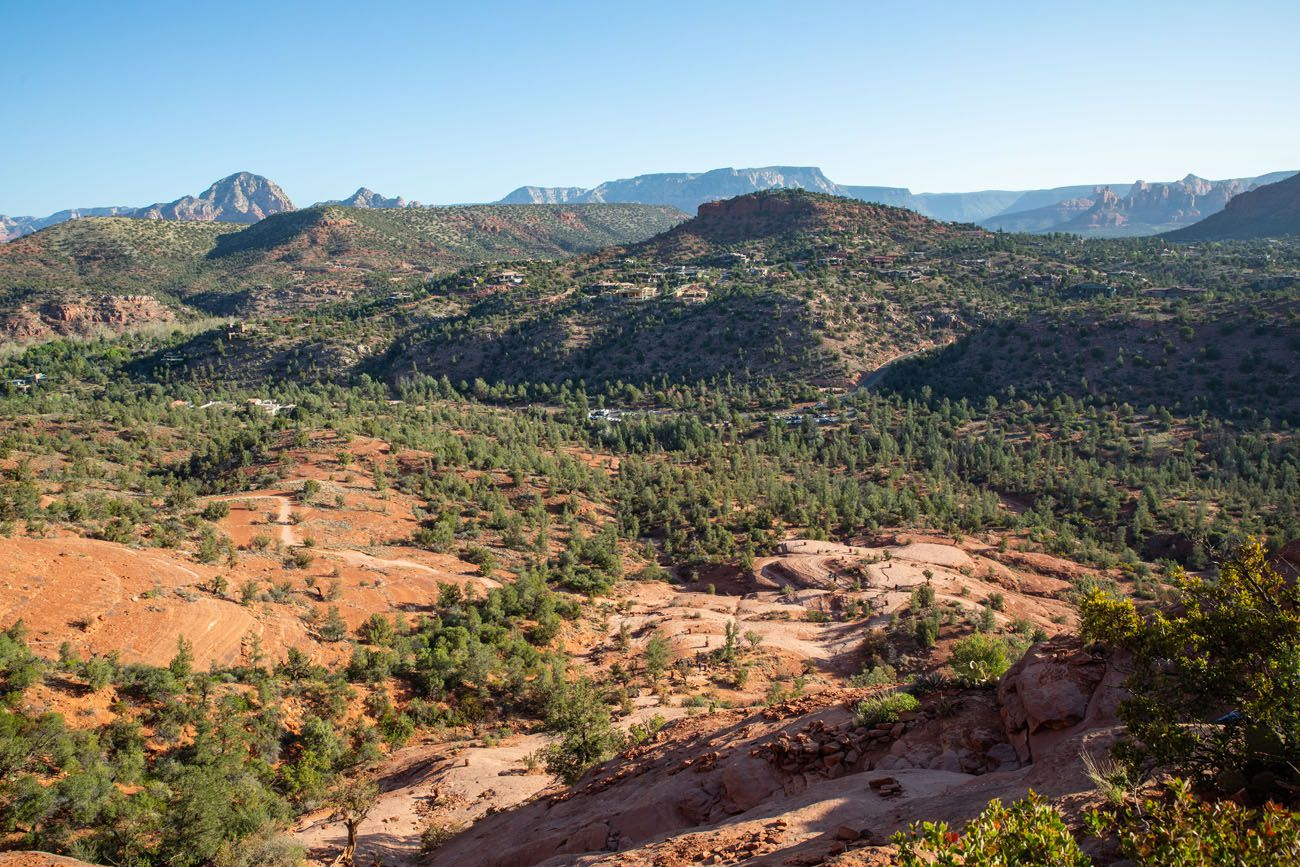 Cathedral Rock View