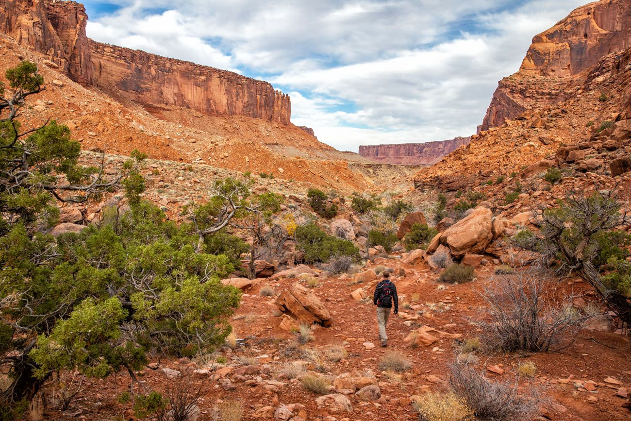 Syncline Loop best things to do in Canyonlands