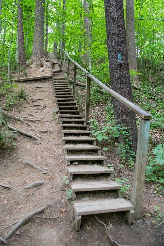 Blue Hen Falls Trail