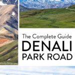 Denali Park Road Travel Guide